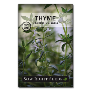 thyme seed packet front