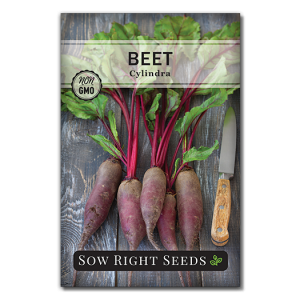 Cylindra beet seed packet front