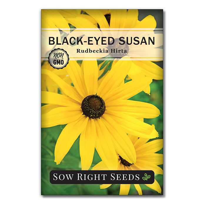 Black Eyed Susan seed packet front