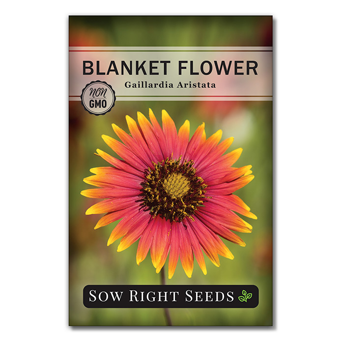 Blanket Flower seed packet front