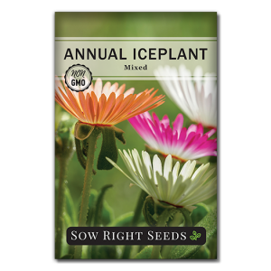 Iceplant seed packet front