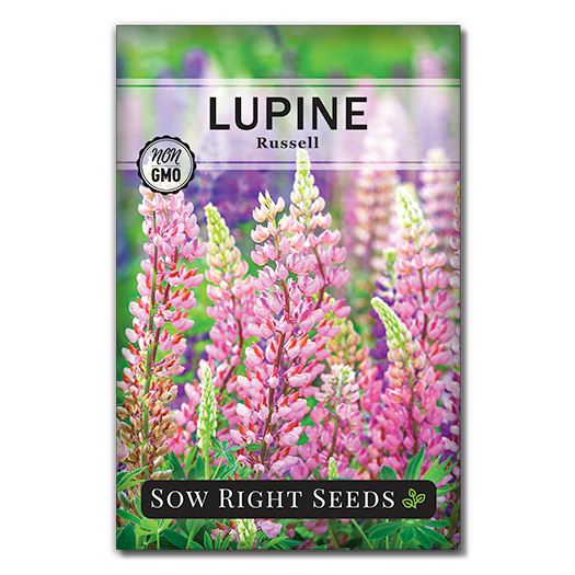 Lupine seed packet front