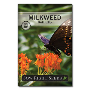 Milkweed Butterfly seed packet front