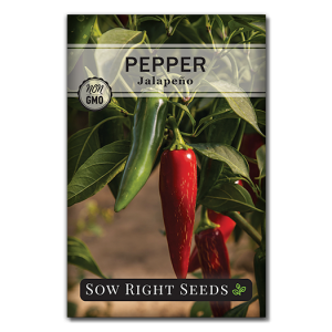 Pepper Jalapeno Front