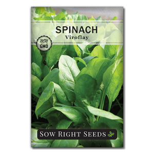 Spinach Viroflay Front