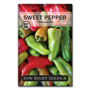 Sweet Pepper Front