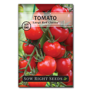 Tomato Large Cherry Front