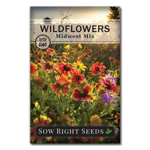 Wildflowers Midwest Front