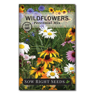 Wildflowers Perennial Front