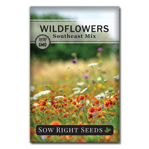 Wildflowers Southeast Front