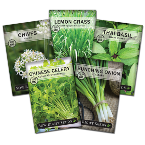 Asian herb seed collection