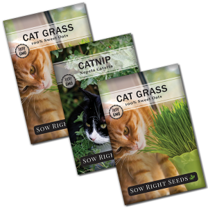 catnip and catgrass seed collection