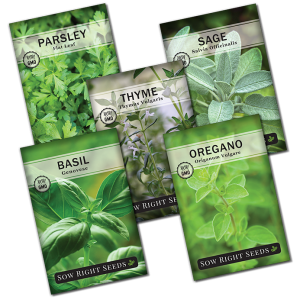 Italian herb seed collection