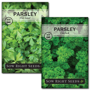 parsley garden seed collection