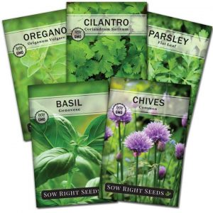 5 herb seed collection