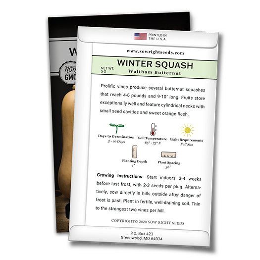 winter squash butternut seed packet