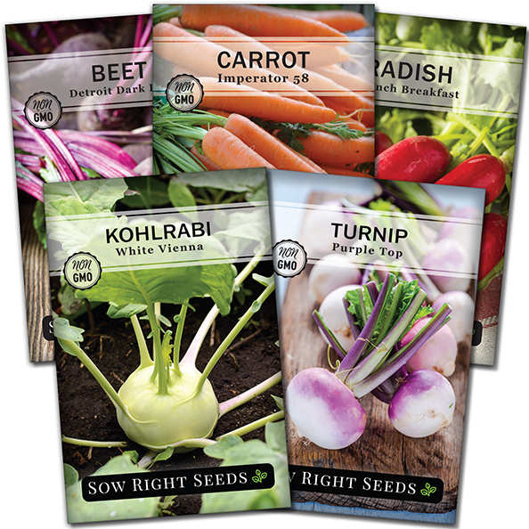 Root Vegetable Seed Collection