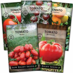 Classic Tomato Seed Collection (1)