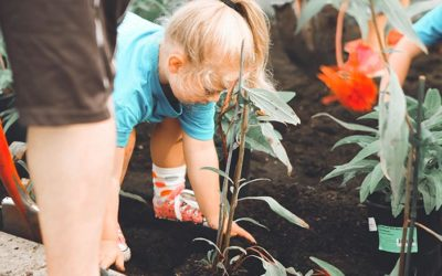 Fun and Easy Garden Science Experiments for Kids